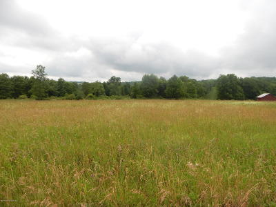 Susquehanna County Residential Lots & Land For Sale: 4163 State Rte 2002