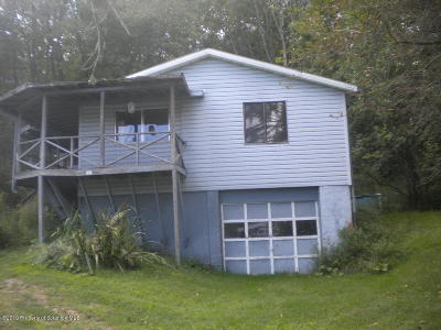 Wyoming County Single Family Home For Sale: 163 Pedrick Rd