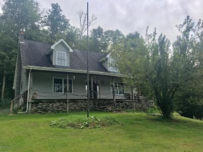 Lenoxville Single Family Home For Sale: 43 Knickerbocker Rd