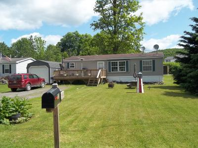 Susquehanna County Single Family Home For Sale: 110 Spring St