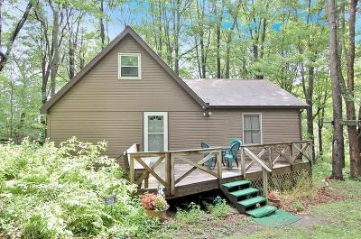 Susquehanna County Single Family Home For Sale: 568 Ridge Rd