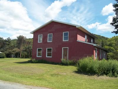 Susquehanna County Single Family Home For Sale: 716 Orchard Road