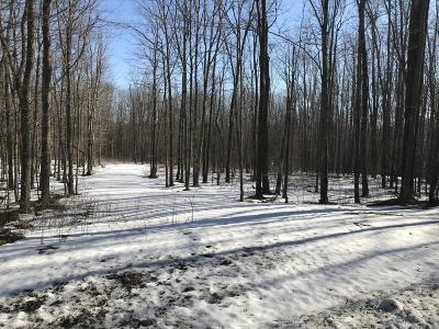 Susquehanna County Residential Lots & Land For Sale: Lot 3 Tirzah Road