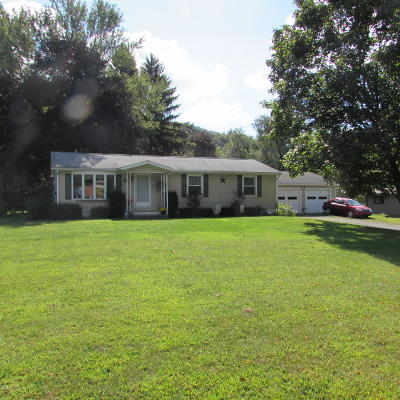 Wyoming County Single Family Home For Sale: 3735 Sr 6