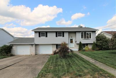 Lackawanna County Single Family Home For Sale: 81 W Palm St
