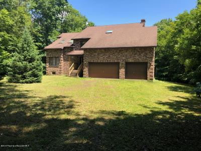 Lackawanna County Single Family Home For Sale: 14 Holly Ln