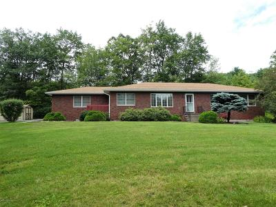 Luzerne County Single Family Home For Sale: 17 Willowbrook