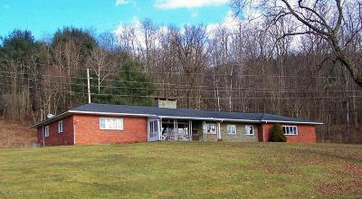 Bradford County Single Family Home For Sale: 11659 Route 706