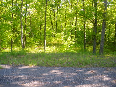 Lackawanna County Residential Lots & Land For Sale: Lt 193 Highland Rd