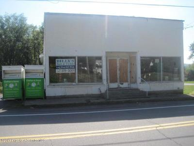 Wyoming County Commercial For Sale: 1577 Sr 307