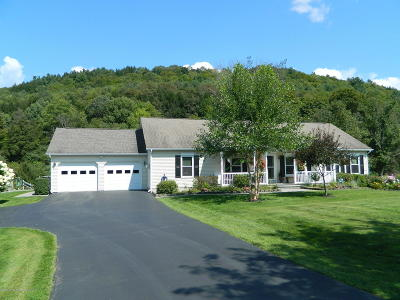 Susquehanna County Single Family Home For Sale: 92 Pamela Dr