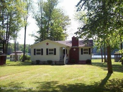 Susquehanna County Single Family Home For Sale: 379 Lake Roy Circle