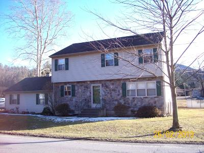 Wyoming County Single Family Home For Sale: 7 E Sr 292