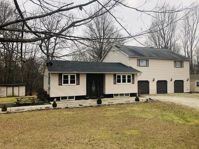 Lackawanna County Single Family Home For Sale: 13057 Lower Maple Dr