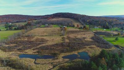 Lackawanna County Residential Lots & Land For Sale: 69 Wilbur Hill Rd