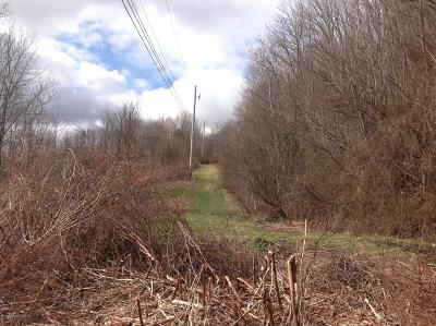 Susquehanna County Residential Lots & Land For Sale: 00 New York Ave