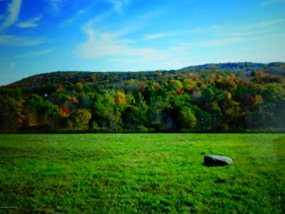 Lackawanna County Residential Lots & Land For Sale: Lot 1 Fords Pond