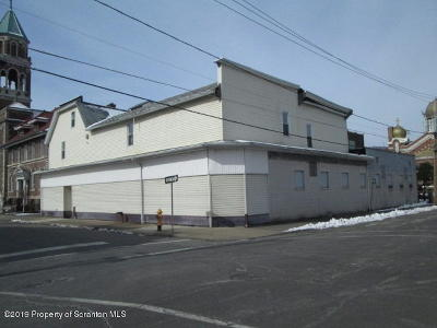 Lackawanna County Commercial For Sale: 117 119 Grant St