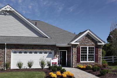 Lititz Single Family Home For Sale: 176 Freedom Street