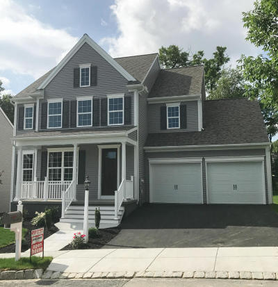 Lancaster Single Family Home For Sale: 18 Tallgrass Path