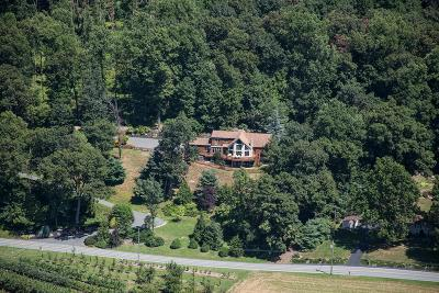 Single Family Home For Sale: 1076 Sheephill Road