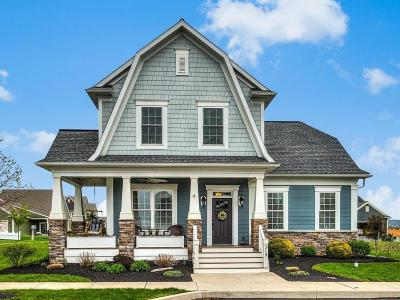 Ephrata Single Family Home For Sale: 313 Liberty Street