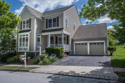 Lancaster Single Family Home For Sale: 305 Little Hill Road