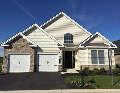 Lititz Single Family Home For Sale: 441 Settlers Drive