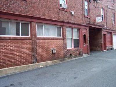 Lancaster Multi Family Home For Sale: 210-216 E Fulton Street