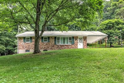 Willow Street Single Family Home For Sale: 1021 Rawlinsville Road