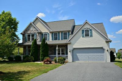Single Family Home For Sale: 1403 Martin Street
