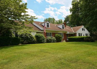Single Family Home For Sale: 592 Valley View Drive
