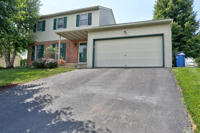 New Holland Single Family Home For Sale: 312 Heritage Drive