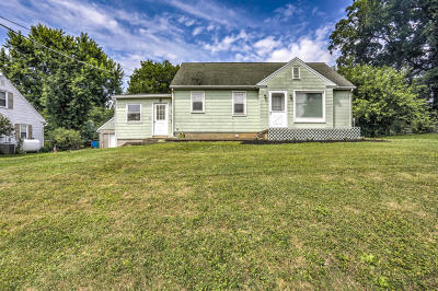 Willow Street Single Family Home For Sale: 184 Peach Bottom Road