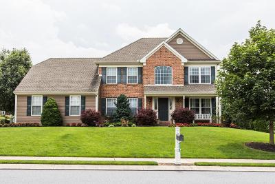 Ephrata Single Family Home For Sale: 45 Reagan Drive