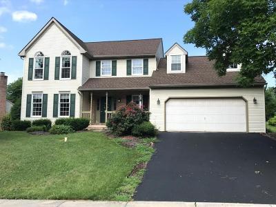 Denver Single Family Home For Sale: 1273 Harvest Drive