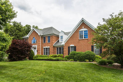 Single Family Home For Sale: 117 Knights Lane