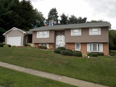 Elizabethtown Single Family Home For Sale: 1300 S Mount Joy Street