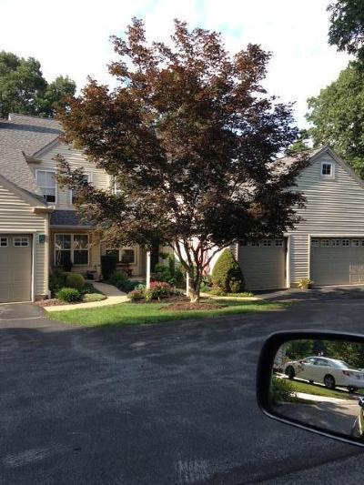 Denver Single Family Home For Sale: 101 Hawk Valley Lane