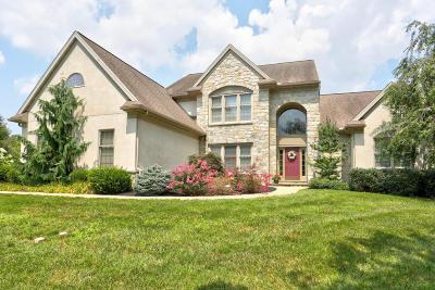 Lancaster Single Family Home For Sale: 1245 Belle Meade Drive