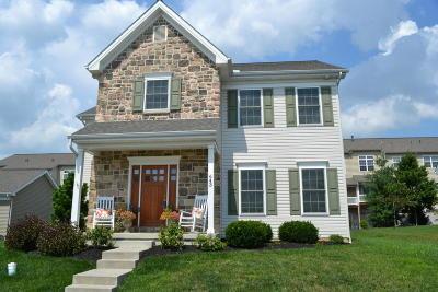 Lancaster Single Family Home For Sale: 643 Richmond Drive
