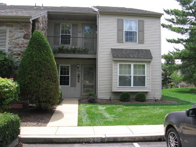 Lancaster Condo/Townhouse For Sale: 245 Greenview Drive