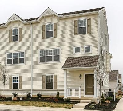 Willow Street Condo/Townhouse For Sale: 216 Andros Court