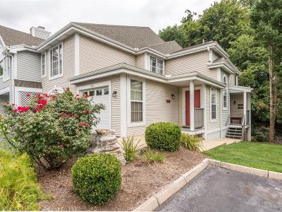 Lancaster Condo/Townhouse For Sale: 704 Country Place Drive