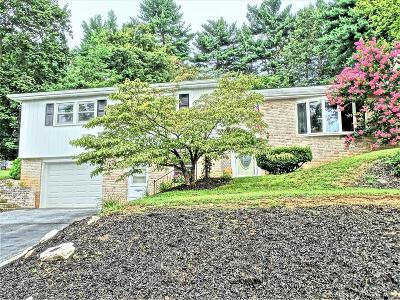 Manheim Single Family Home For Sale: 407 Orchard Lane
