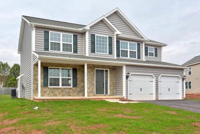 Denver Single Family Home For Sale: 1315 Harvest Drive