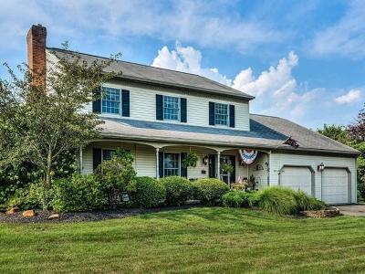 New Providence Single Family Home For Sale: 183 Krantz Mill Road