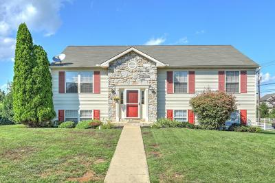 Marietta Single Family Home For Sale: 109 Ashley Drive