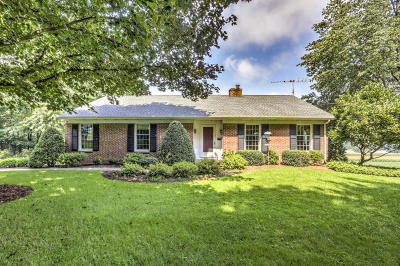 New Holland Single Family Home For Sale: 153 Greentree Drive