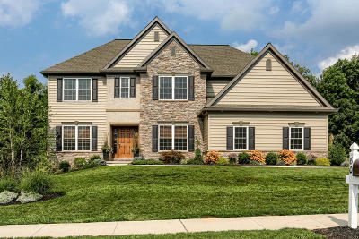 Single Family Home For Sale: 80 Summers Drive